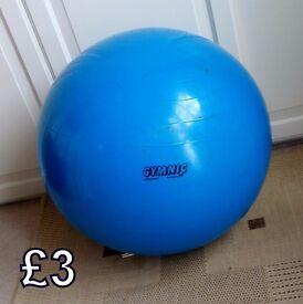 Gymnic Exercise Ball