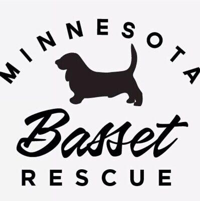 Minnesota Basset Rescue