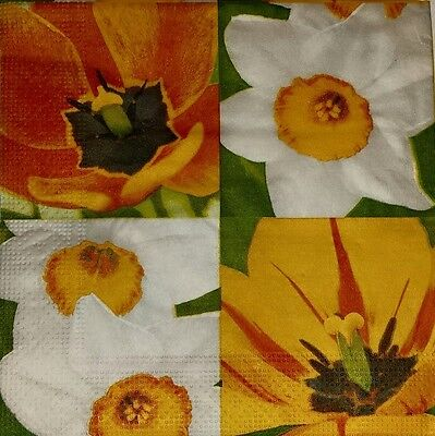 4 x Single  Paper Napkins FLOWERS Narcissus  Tulips for DECOUPAGE and CRAFT-1