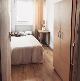 spacious and fresh room in a friendly flatshare in GREENWICH! 10 mins to CENTRAL LONDON