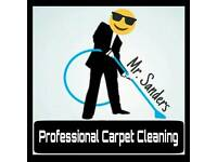 Professional Carpet and Upholstery Cleaning Cleaner