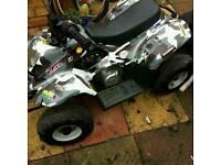 110cc quard