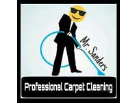 Carpet Upholstery Cleaning Cleaner domestic sofa rug chair car