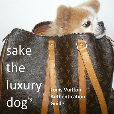 Louis Vuitton Evidence Ebay