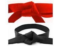 Boldon Taekwon Do Martial Art