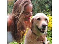 Love animals? Become a pet sitter with Pawshake today! FREE Insurance included