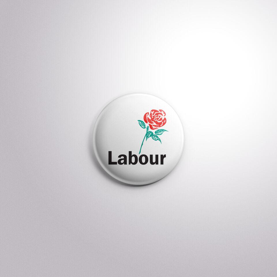 Scottish National Party Logo Button Badge UK General Election 2017-4 Sizes