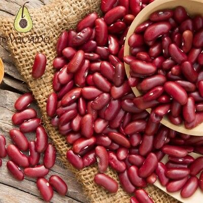 Organic Red Kidney Beans / 500g - 4kg / Premium Quality / Free P&P / Lovocado - Low Fat Organic Kidney Beans
