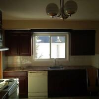 CUSTOM KITCHENS, CABINETRY AND COUNTERTOPS INSTALLED!