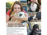 Trusted Pet/House sitter/Dog walker available in Arborfield and surrounding areas