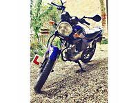 Yamaha YBR 125 Project Bike