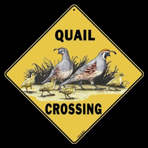 """QUAIL Crossing Sign, Metal 12"""" by 12"""" on sides, 16"""" on Diagonal-"""