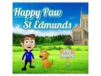 Dog walking (Happy Paw St Edmunds) Dog walker