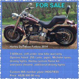 Harley Davidson 2014 Fatboy