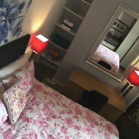 Great located double room in Wansted Station