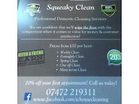 HALF PRICE Professional Domestic Cleaning LIMITED SPACES!