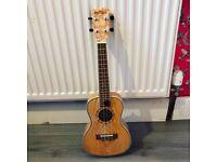 Freshman ukulele