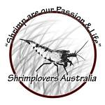 Shrimplovers Australia