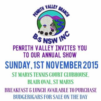 Show Budgies  Penrith Penrith Area Preview