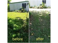 Hedge & Grass cutting - Local gardener - Gardening services - Tidy up - Lawn mowing -Fencing