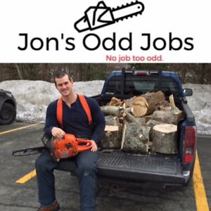 Tree Removal and Cleanup! Specializing in Small/Odd Jobs