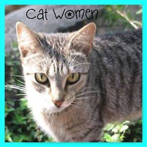 Cat Woman - Soquilichi Rescue Ranch Childers Bundaberg Surrounds Preview