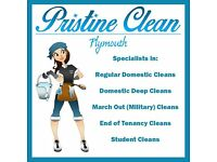 Regular Cleaning / End of Tenancy / Probate / Military March Outs / Spring Cleans . Insured & DBS