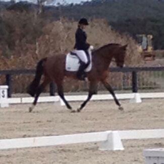 Rebecca Scott equestrian Cranbourne South Casey Area Preview