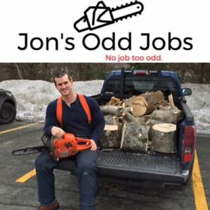 Tree Removal - specializing in small jobs