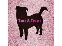Tails & Treats dog walking and pet services. Experienced, reliable and trustworthy care!