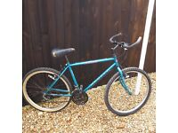 (A) Apollo Actiue 3200 Ladies bike (A)