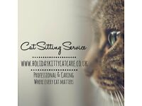 Holiday Kitty Cat Care Cat Sitting Service