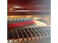 BABY GRAND REID-SOHN + video - THE PIANO PAVILION