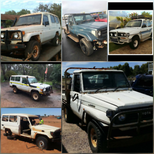 We Want to Buy Landcruisers