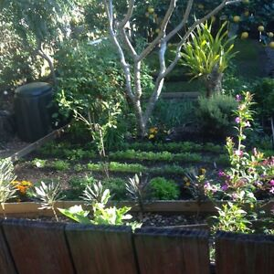 SUFFOLK PARK /BYRON HILLS Suffolk Park Byron Area Preview