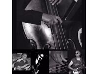 Ex Acm/Bimm/Acmr Bass lecturer available for tuition (beginner intermediate or advanced) 30.00 ph