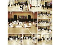 Karate Class for Adults & Kids