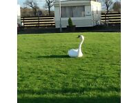 Long term let caravan available in Stirling