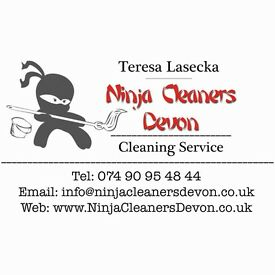 Cleaning service Paignton Special New Year Rate!!!