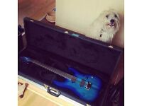 Ibanez Iron Label Series - New with 2nd hand hardcase. £600 final price - no trades