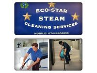 Eco-Star Steam Cleaning Services (we cover all areas of cleaning, residentially and commercially)