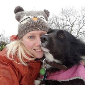 Professional Dog Walker based in Laindon