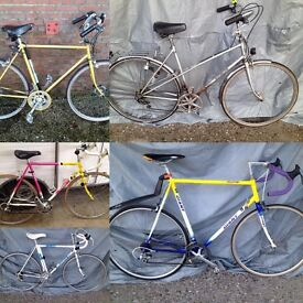 Variety of Men's and Women's racing bikes