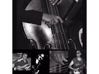 Bass player with bvs good gear transport Available for paid gigs this weekend