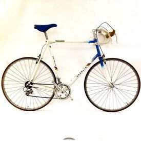 Gazelle 60 cm Classic Dutch Road Bike Fully Serviced Super Light Steel Frame
