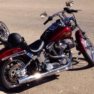 1988 Harley Davidson softtail standard