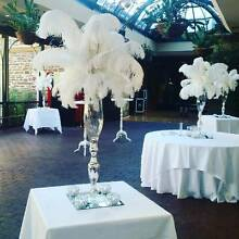 Wedding & Event Hire - Popular Business for Sale Parafield Gardens Salisbury Area Preview