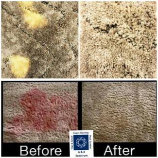 Carpet colour solutions from A&A Spectrum Maitland Maitland Area Preview
