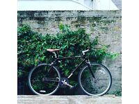 Stylish Python Bicycle