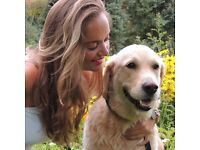 Looking for a trusted, insured pet sitter in your area? Check out Pawshake today!